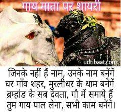 गाय पर शायरी, गाय माता पर शायरी, गौमाता पर शायरी, गाय शायरी, गाय की शायरी, गाय के लिये शायरी, गाय पर कुछ शायरी, गाय पर बेस्ट शायरी, गाय हेतु शायरी, गाय बचाओ शायरी, गैया माता पर शायरी, गौवंश पर शायरी, गौधन पर शायरी, गाय शायरी इन हिंदी, गाय माता पर शायरी इन हिंदी, गाय पर शायरी इन हिंदी, गौमाता पर शायरी इन हिंदी, गाय के लिये शायरी इन हिंदी, cow poetry in hindi, cow poem in hindi, cow poem hindi lyrics, cow poetry hindi lyrics, cow shayari in hindi, gaay shayari in hindi lyrics, gaay par shayari in hindi, gaay shayari in hindi, gay shayari in hindi, gay par shayari in hindi, गौ रक्षा पर कविता, गौ माता की शायरी, गौ रक्षा शायरी, गौ माता शायरी इन हिंदी, गौ माता स्टेटस, गौ माता status, गौ माता स्टेटस इन हिंदी, गौ माता कोट्स इन हिंदी, गौमाता शायरी इन हिंदी, गौमाता शायरी, गौ माता के नारे, गौमाता स्लोगन इन हिंदी, कामधेनु शायरी, कृष्ण की गाय पर शायरी, गाय पर शार्ट पोएम, गाय पर छोटी कविता, गौमाता पर कविता, गौमाता पर मार्मिक कविता, गौमाता पर कविता इन हिंदी, गौमाता पर चार पंक्तियाँ, काऊ शायरी इन हिंदी, काऊ पर शायरी, काऊ पर कविता, काऊ पर बच्चों के लिये कविता, gaumata par shayari in hindi, gaumata shayari hindi, gaumata shayari video, gaay par video, gaay par kavita hindi